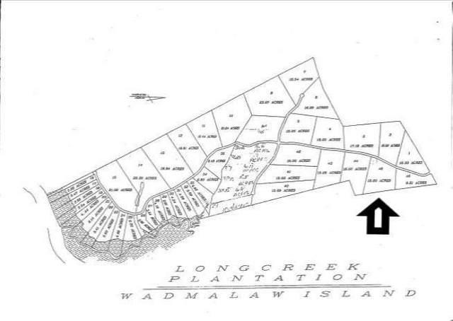 0 Long Creek Road, Wadmalaw Island, SC 29487 (#20008682) :: Realty One Group Coastal