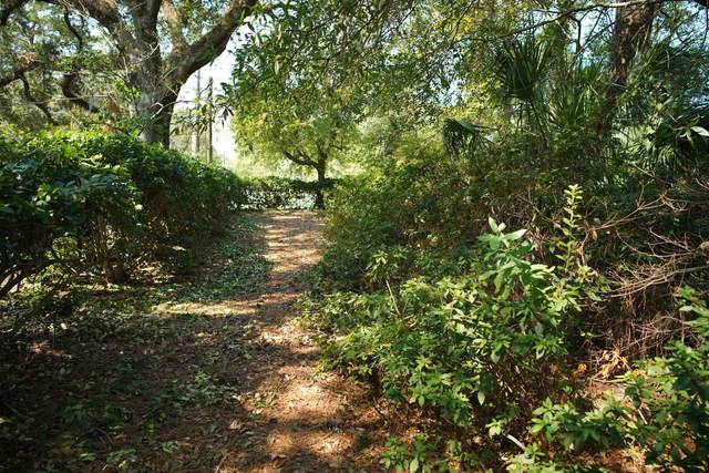 1308 Old Towne Road, Charleston, SC 29407 (#20008808) :: Realty One Group Coastal