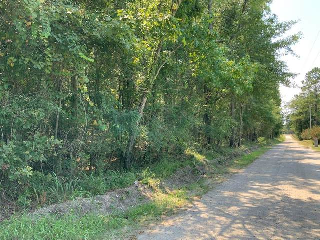 Lot #2 Cottage Drive, Summerton, SC 29148 (#20009456) :: Realty One Group Coastal
