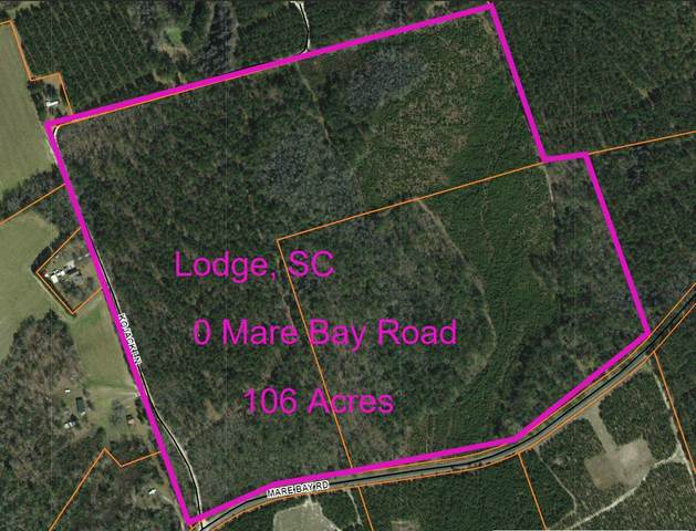 0 Mare Bay Road, Lodge, SC 29082 (#20010331) :: The Cassina Group