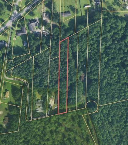 5366 Christian Dawn Drive, Huger, SC 29450 (#20010361) :: Realty ONE Group Coastal