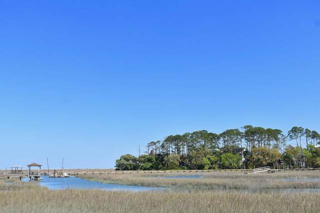 7760 Eddingsville Beach Road, Edisto Island, SC 29438 (#20010649) :: The Cassina Group