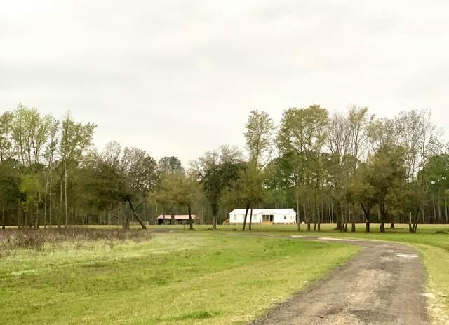 6357 Jefferies Highway, Walterboro, SC 29488 (#20010697) :: The Cassina Group