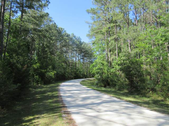 1041 Bridle Gate Trail, Awendaw, SC 29429 (#20011360) :: The Cassina Group