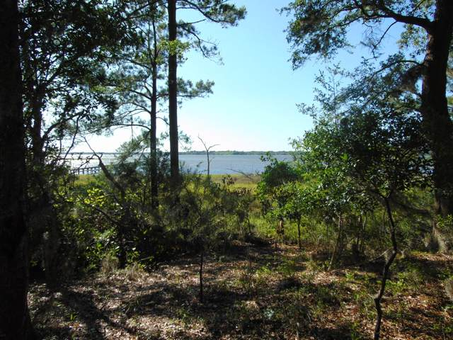 5753 Boone Haven Road, Wadmalaw Island, SC 29487 (#20012330) :: The Gregg Team