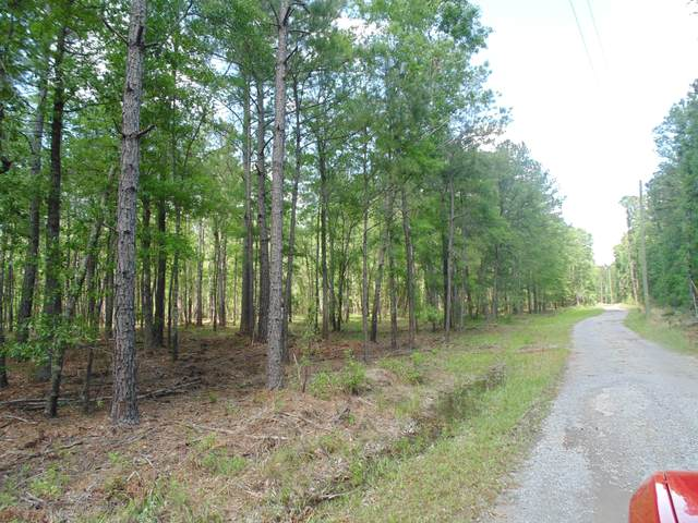 Tract 2 Dianes Trail, Huger, SC 29450 (#20013257) :: The Gregg Team