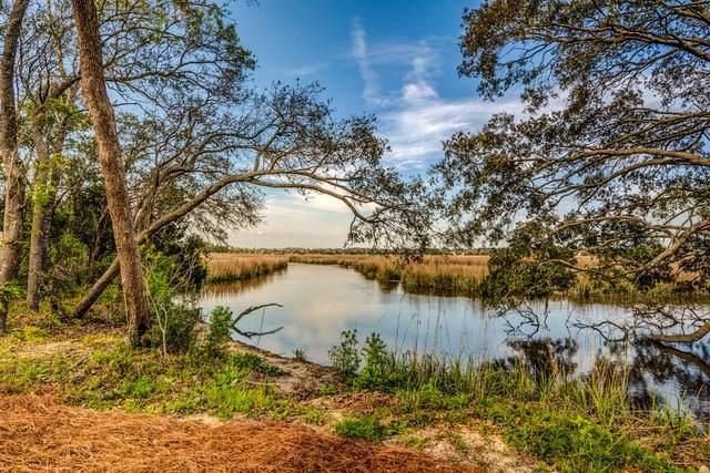 2226 Waterfowl Lane, Charleston, SC 29414 (#20014264) :: Realty One Group Coastal