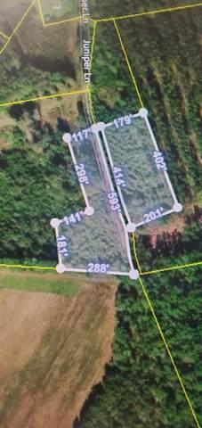 0 Juniper Lane, Ruffin, SC 29475 (#20015701) :: The Cassina Group