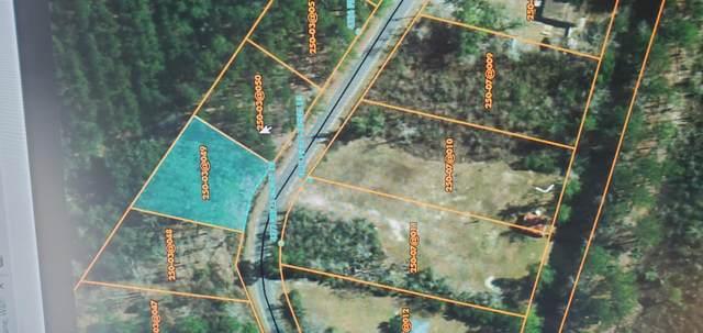 0 Prices Bridge, Walterboro, SC 29488 (#20017056) :: The Cassina Group