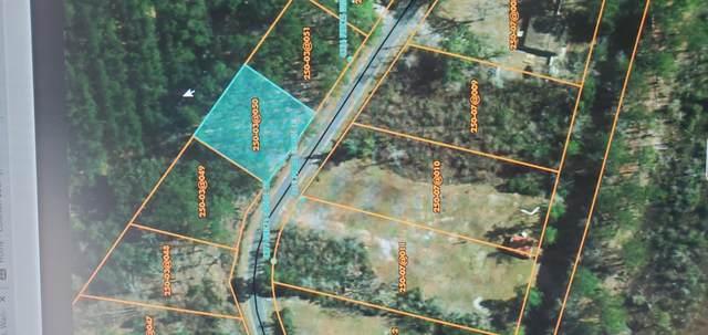 00 Prices Bridge Road, Walterboro, SC 29488 (#20017058) :: The Cassina Group