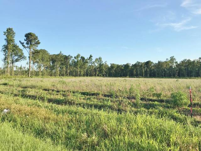 Lot 9 Jet Ridge Road, Holly Hill, SC 29059 (#20017710) :: The Cassina Group