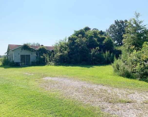 1102 Santee River Road, Jamestown, SC 29453 (#20019293) :: Realty One Group Coastal