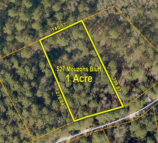 527 Mouzons Bluff, Mcclellanville, SC 29458 (#20019354) :: The Cassina Group
