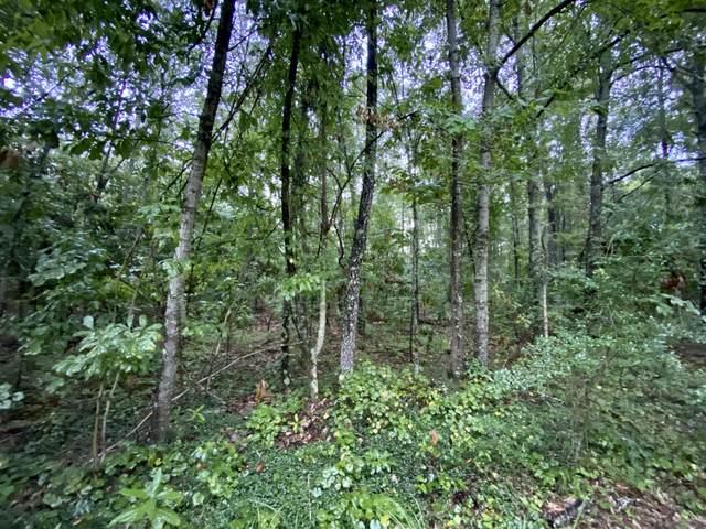 Lot 11 Indian Field Drive, Bonneau, SC 29431 (#20019864) :: The Cassina Group