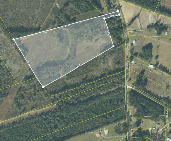 Tract 2 Short Cut Road, Cross, SC 29436 (#20021298) :: The Cassina Group