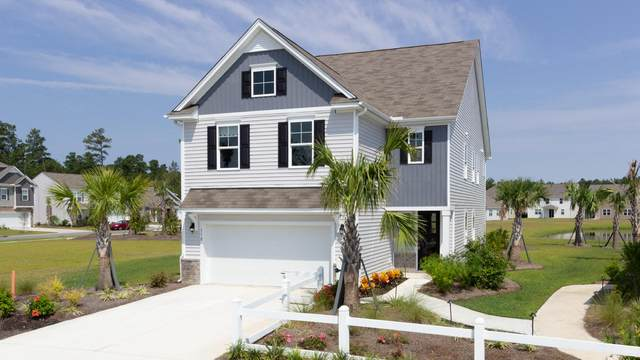232 Celestial Boulevard, Summerville, SC 29486 (#20022084) :: The Gregg Team