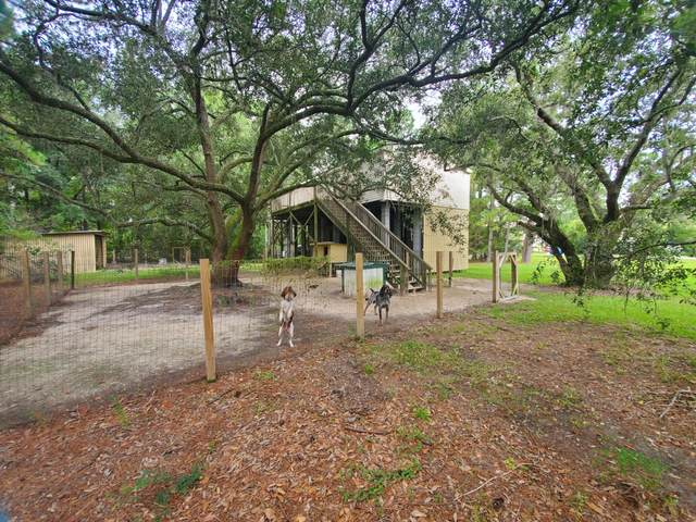1587 Macoma Drive, Mount Pleasant, SC 29466 (#20022416) :: The Cassina Group