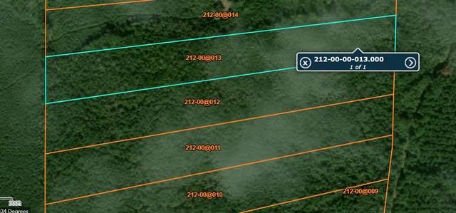 0 No Address Off Abraham Rd, Walterboro, SC 29488 (#20022553) :: Realty One Group Coastal
