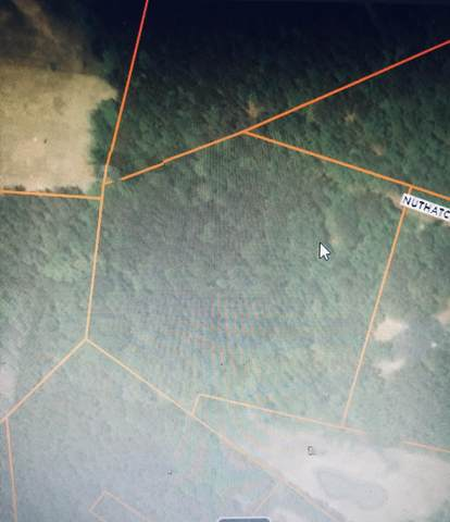 0 Griffith Acres Drive, Cottageville, SC 29435 (#20024423) :: Realty ONE Group Coastal