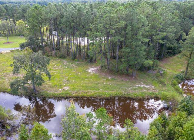 7568 Ladys Secret Lane, Awendaw, SC 29429 (#20026475) :: The Cassina Group