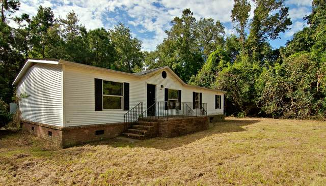 6205 Sadie Lane, Wadmalaw Island, SC 29487 (#20026556) :: The Gregg Team
