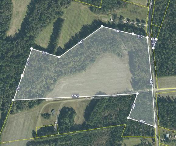 0 Independent School Road, Reevesville, SC 29471 (#20026614) :: The Cassina Group