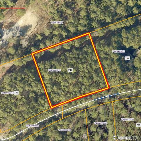 744 Romain Road, Mcclellanville, SC 29458 (#20026848) :: Realty ONE Group Coastal