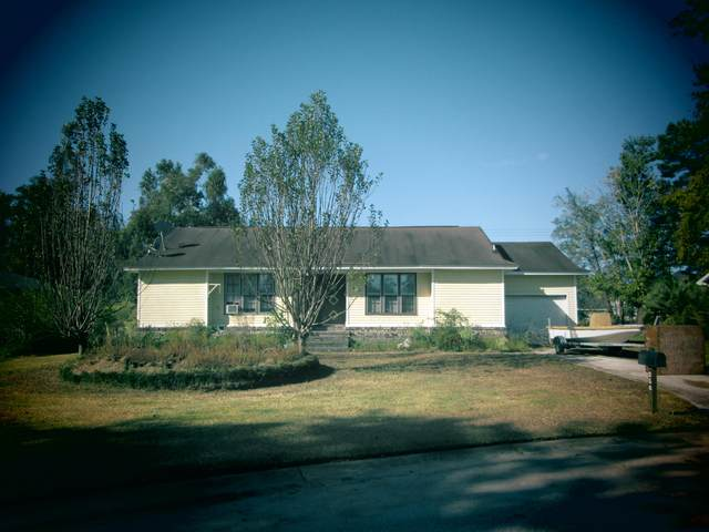 256 Columbia Drive, Ladson, SC 29456 (#20028816) :: Realty One Group Coastal