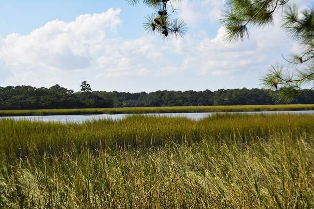 1570 Creekwood Road, Edisto Island, SC 29438 (#20028819) :: Realty One Group Coastal