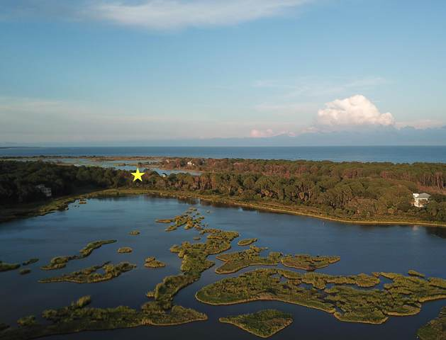 168 Lake Timicau Lane Lot 87, Dewees Island, SC 29451 (#20029583) :: Realty ONE Group Coastal