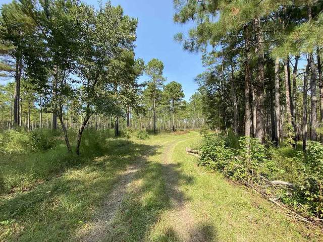 0 Plantersville Road, Georgetown, SC 29440 (#20030819) :: Realty One Group Coastal