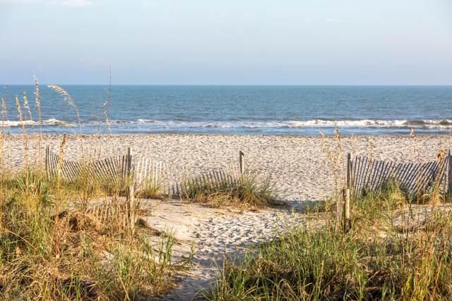 113 E Arctic Avenue C, Folly Beach, SC 29439 (#20031032) :: The Cassina Group