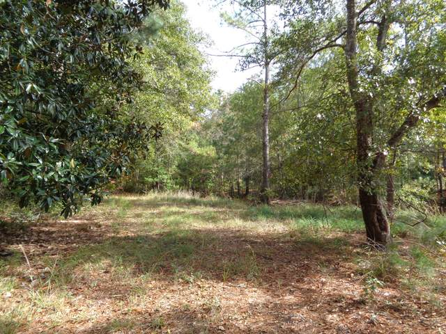 12 Awendaw Lakes Boulevard, Awendaw, SC 29429 (#20031675) :: CHSagent, a Realty ONE team