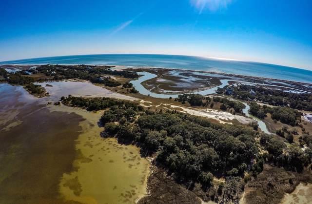 1 Savage Isle, Edisto Island, SC 29438 (#21000239) :: Realty ONE Group Coastal