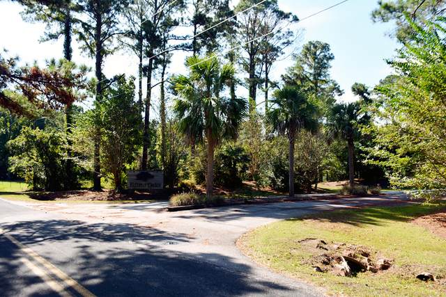 31 Deer Track Drive, Edisto Island, SC 29438 (#21000548) :: The Cassina Group
