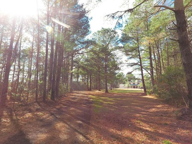 7700 Green Pond Highway, Walterboro, SC 29488 (#21000608) :: The Cassina Group