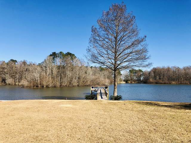 291 Belvedere Drive, Eutawville, SC 29048 (#21001453) :: The Cassina Group