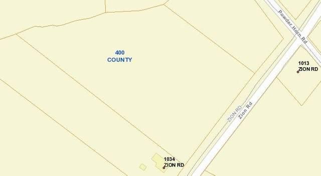 0 Zion Road, Dorchester, SC 29437 (#21001504) :: The Cassina Group