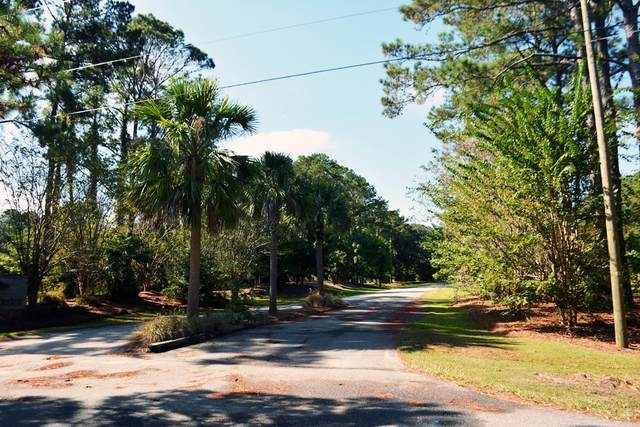 3 Blackbear Drive Lot 3, Edisto Island, SC 29438 (#21001539) :: Realty ONE Group Coastal