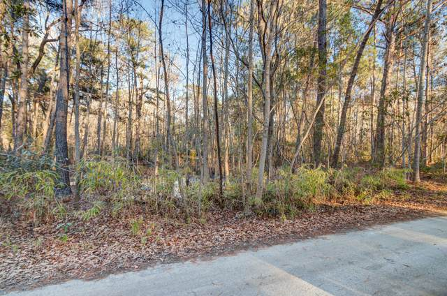 00 Corbetts Alley Lot 14, Johns Island, SC 29455 (#21001889) :: CHSagent, a Realty ONE team