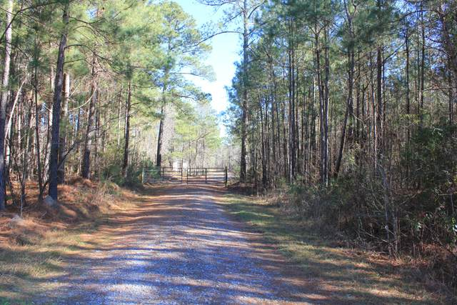 528 Falling Leaves Trail, Bonneau, SC 29431 (#21002051) :: Realty ONE Group Coastal