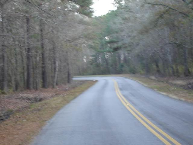 5563 Mauss Hill Rd., Adams Run, SC 29426 (#21002172) :: The Gregg Team