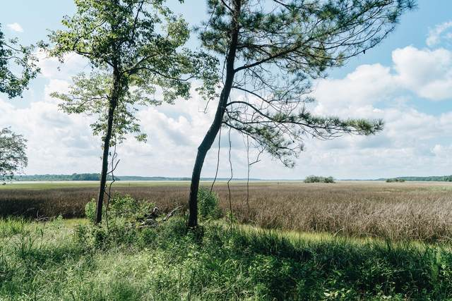 0 River Bend, Charleston, SC 29412 (#21002338) :: Realty ONE Group Coastal