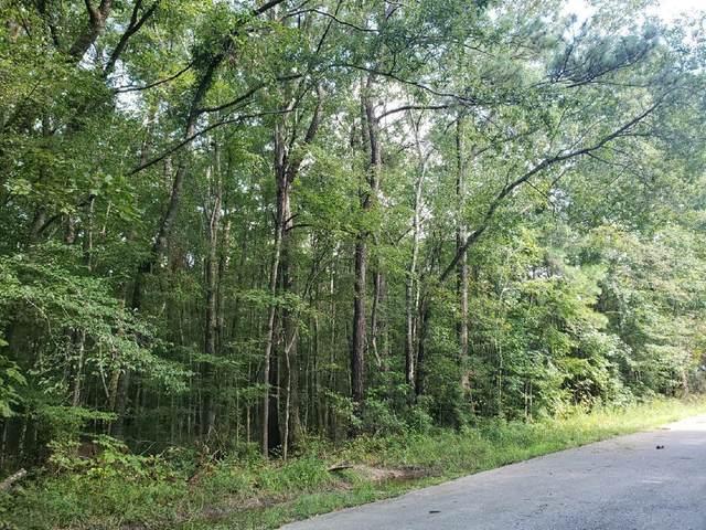 236 Pecan Drive, Summerville, SC 29483 (#21002502) :: Flanagan Home Team