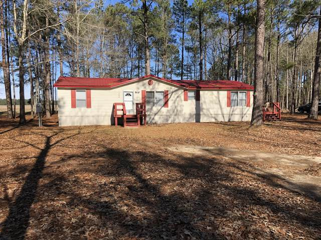 1060 Myrtle Drive, Santee, SC 29142 (#21002828) :: Realty ONE Group Coastal