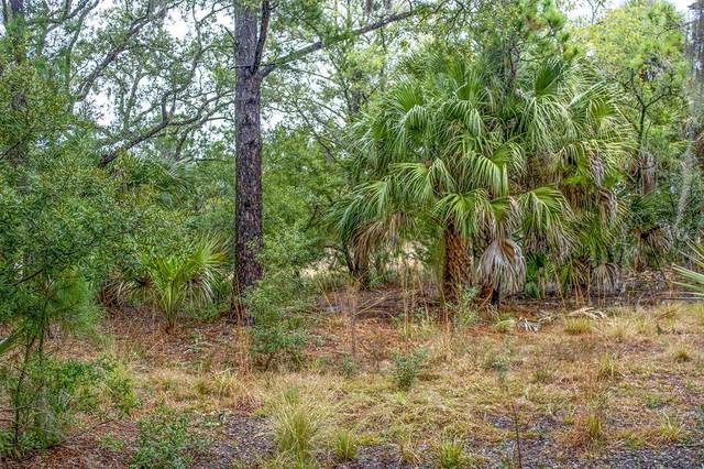 53 Painted Bunting Trail, Edisto Island, SC 29438 (#21004129) :: The Cassina Group