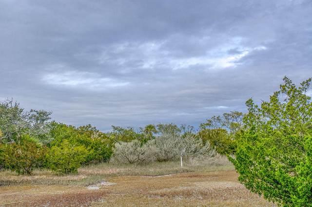 0 Hammocks Way, Edisto Island, SC 29438 (#21004268) :: The Cassina Group