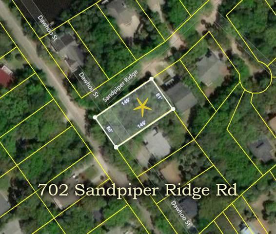 702 Sandpiper Road, Edisto Island, SC 29438 (#21007131) :: The Gregg Team