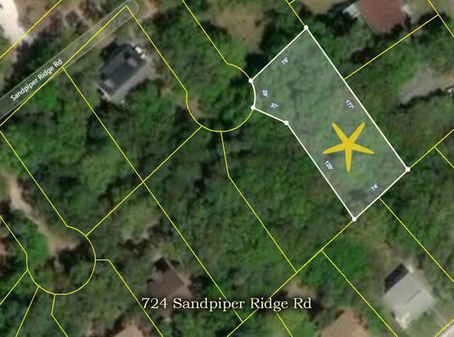 724 Sandpiper Road, Edisto Island, SC 29438 (#21007137) :: The Gregg Team