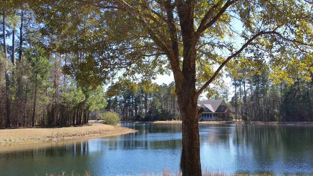 4025 Ten Shillings Way, Hollywood, SC 29470 (#21007424) :: The Cassina Group